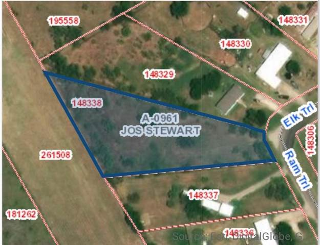 5511 Ram Trail, Midlothian, TX 76065 (MLS #14242188) :: Real Estate By Design