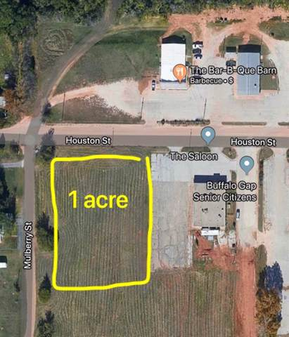 1 AC Houston Street, Buffalo Gap, TX 79508 (MLS #14242252) :: Trinity Premier Properties