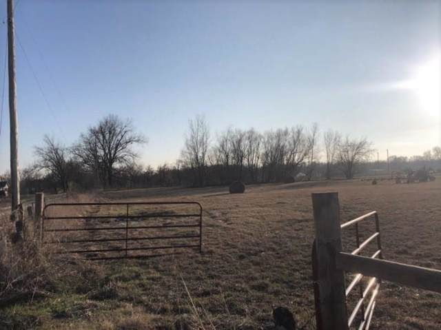 TBD State Hwy 11, Wolfe City, TX 75496 (MLS #14242266) :: The Kimberly Davis Group