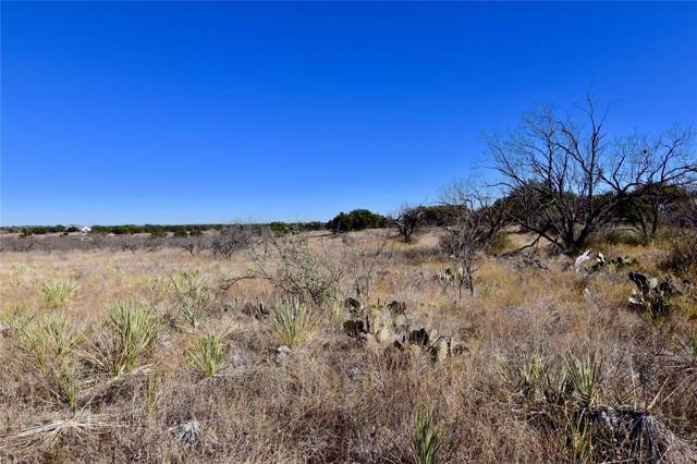 Lot 1 County Road 225, Brownwood, TX 76801 (MLS #14244211) :: The Good Home Team