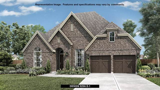 2730 Kingston Street, Prosper, TX 75078 (MLS #14251453) :: Real Estate By Design