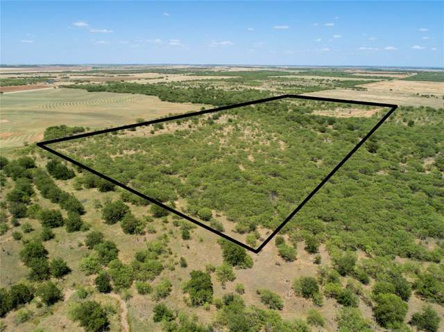 TBD Self Road, Olney, TX 76374 (MLS #14253210) :: The Kimberly Davis Group