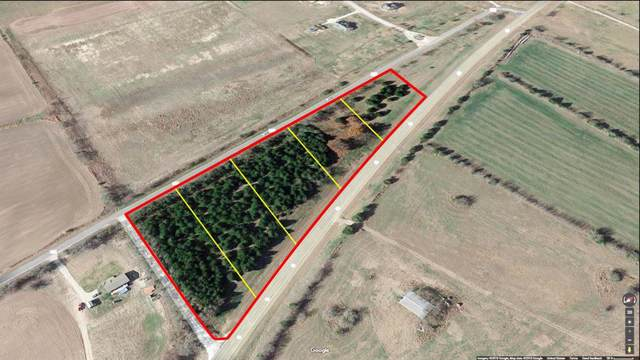 Lot 5 County Road 619, Blue Ridge, TX 75424 (MLS #14256733) :: The Kimberly Davis Group
