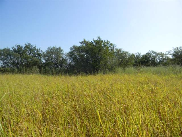 N/A County Road 142, Lawn, TX 79530 (MLS #14256870) :: Real Estate By Design
