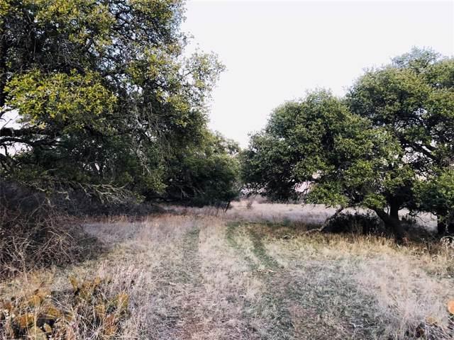 4015 County Road 235, Brownwood, TX 76801 (MLS #14257270) :: Potts Realty Group