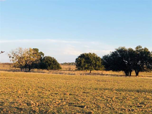TBD County Road 225, Brownwood, TX 76801 (MLS #14257306) :: The Good Home Team