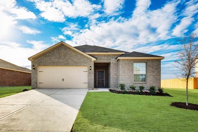 4000 Lakeview Drive, Sanger, TX 76266 (MLS #14257351) :: Trinity Premier Properties