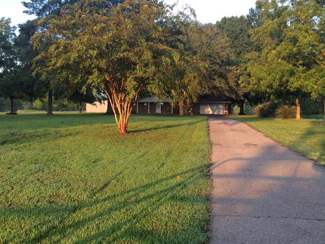 1320 County Road 4305, Annona, TX 75550 (MLS #14258573) :: The Mauelshagen Group