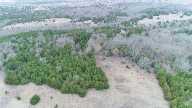 4416 County Road 3425, Honey Grove, TX 75446 (MLS #14259407) :: Bray Real Estate Group