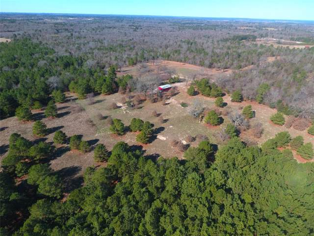 20834 County Road 26, Tyler, TX 75705 (MLS #14259808) :: The Kimberly Davis Group