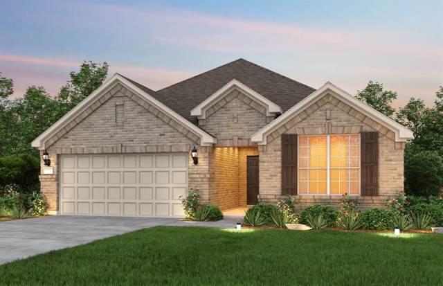 9409 Leisure Pace Lane, Oak Point, TX 75068 (MLS #14260278) :: Potts Realty Group