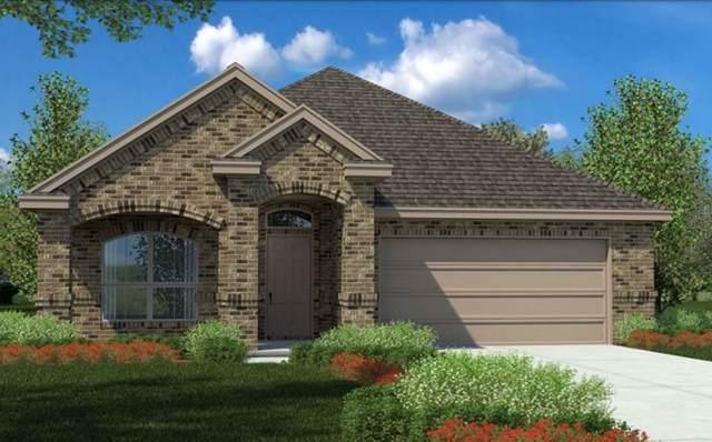 141 Wagon Mound Drive, Waxahachie, TX 75167 (MLS #14260903) :: The Sarah Padgett Team