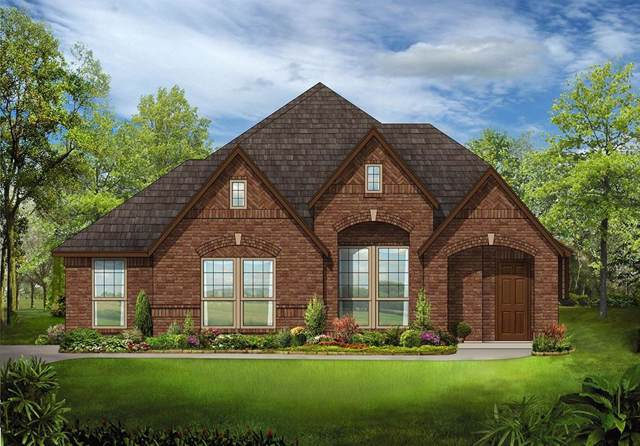 709 Indian Blanket Drive, Midlothian, TX 76065 (MLS #14261071) :: Potts Realty Group