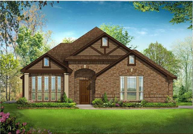 729 Oakleaf Drive, Midlothian, TX 76065 (MLS #14261311) :: The Hornburg Real Estate Group