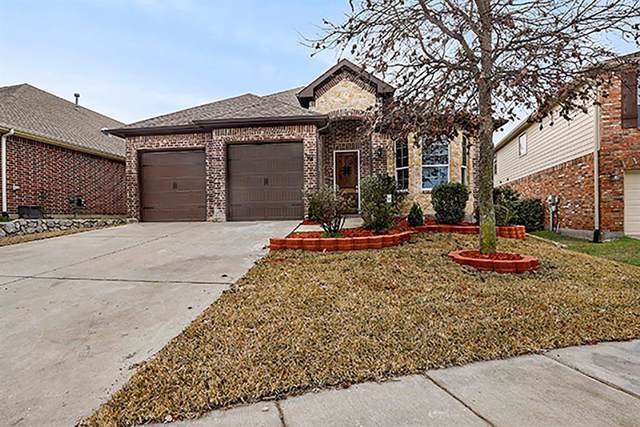 704 Lake Meadow Lane, Little Elm, TX 75068 (MLS #14261612) :: Team Tiller