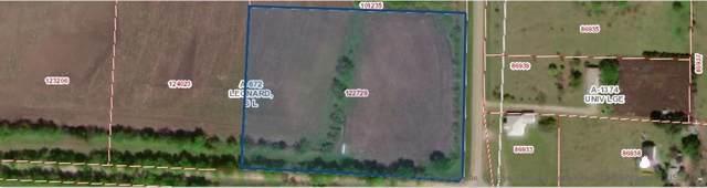TBD Fm 981, Trenton, TX 75490 (MLS #14261666) :: Robbins Real Estate Group