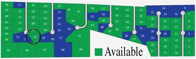 Lot 70 Garfield Court, Weston, TX 75097 (MLS #14263572) :: The Chad Smith Team