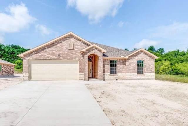 207 Shady Oaks Drive, Runaway Bay, TX 76426 (MLS #14263725) :: The Hornburg Real Estate Group