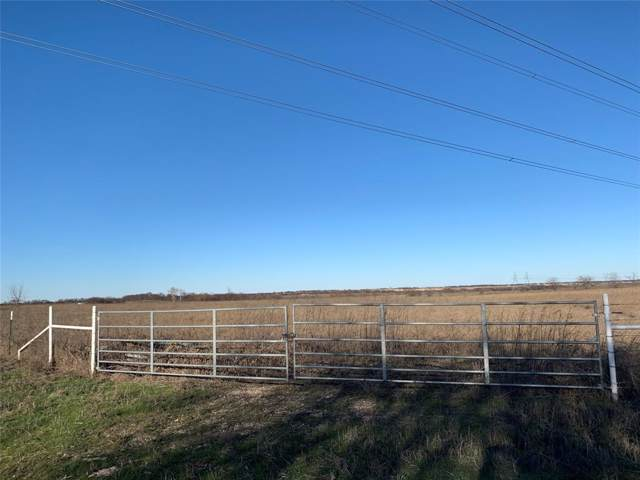14200 Stice Road, Krum, TX 76249 (MLS #14264273) :: The Mauelshagen Group