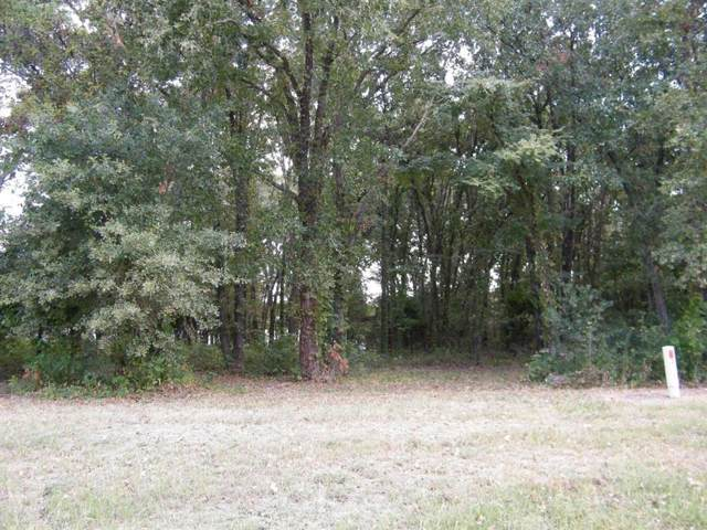 Lot 163 Clubhouse Drive, Corsicana, TX 75109 (MLS #14265203) :: The Kimberly Davis Group