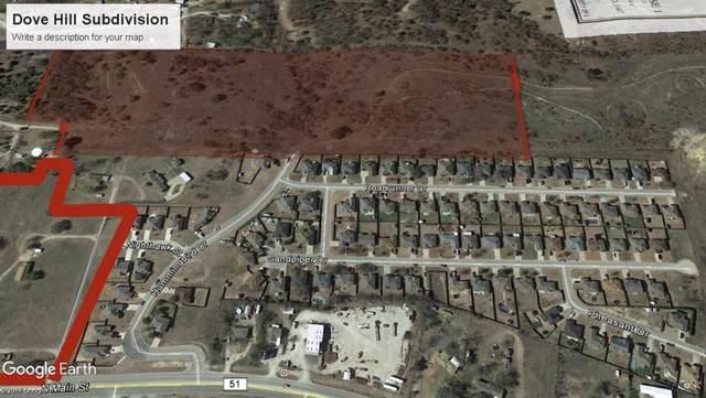 1713 N Main Street, Weatherford, TX 76085 (MLS #14265245) :: Team Hodnett