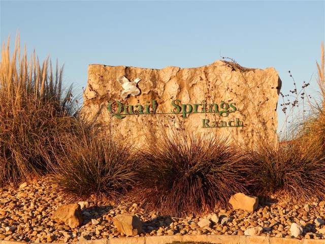 Lot 112 Sandpiper Drive, Weatherford, TX 76088 (MLS #14265340) :: The Mauelshagen Group