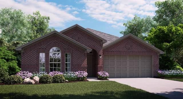 2420 Larimar Drive, Little Elm, TX 75068 (MLS #14265464) :: Maegan Brest | Keller Williams Realty