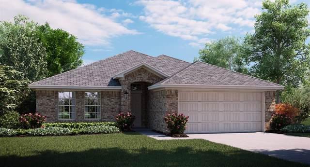 2512 Dolostone Drive, Little Elm, TX 75068 (MLS #14265491) :: Maegan Brest | Keller Williams Realty