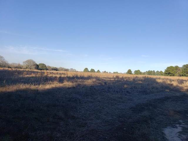 CR 3450 Ew Goolsby, Lovelady, TX 75851 (MLS #14265568) :: The Tierny Jordan Network