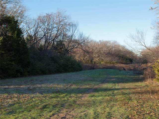 3701 Hickory Tree Road, Balch Springs, TX 75180 (MLS #14266159) :: The Kimberly Davis Group