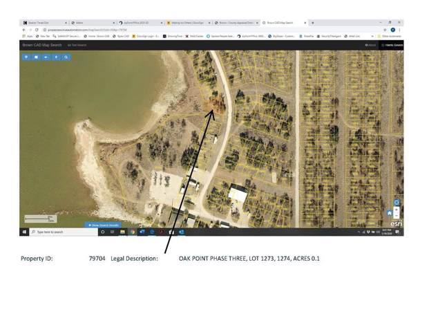 TBD Lake Front Circle, May, TX 76857 (MLS #14266484) :: RE/MAX Landmark
