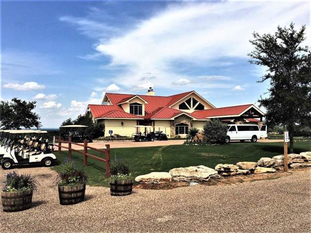 TBD Cheryl Street, Brownwood, TX 76801 (MLS #14266911) :: The Hornburg Real Estate Group