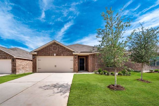 4553 Mares Tail Drive, Forney, TX 75126 (MLS #14266928) :: The Chad Smith Team