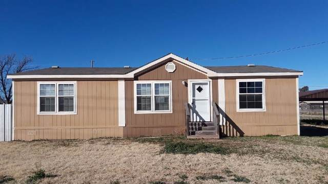 311 El Paso, Merkel, TX 79536 (MLS #14267383) :: The Good Home Team
