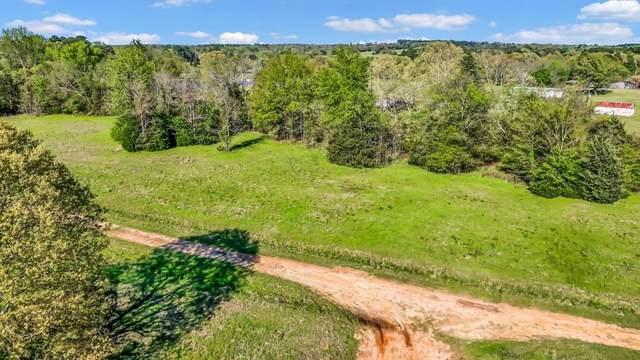 Lot 22 Hunters Hollow, Mount Vernon, TX 75457 (MLS #14267882) :: Team Tiller