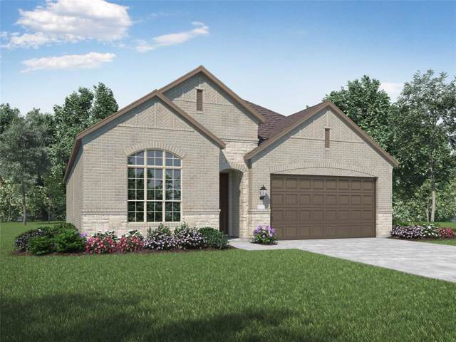 1312 Audubon Drive, Little Elm, TX 75068 (MLS #14268589) :: Bray Real Estate Group