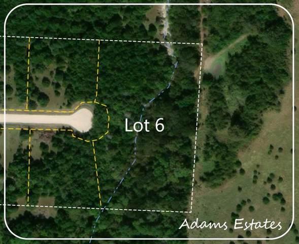 Lot 6 County Rd 4920, Leonard, TX 75452 (MLS #14268675) :: Frankie Arthur Real Estate