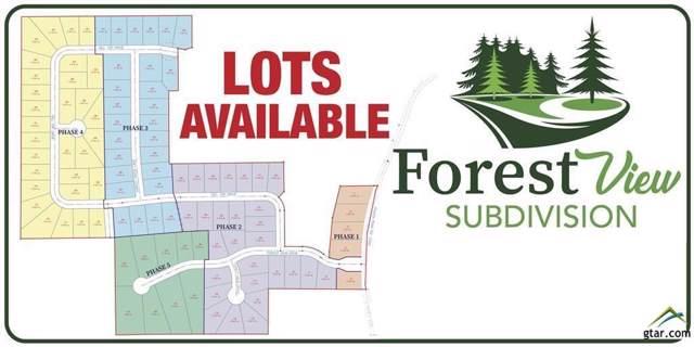 Lot 43 Hill Top Drive, Mineola, TX 75773 (MLS #14270191) :: The Kimberly Davis Group