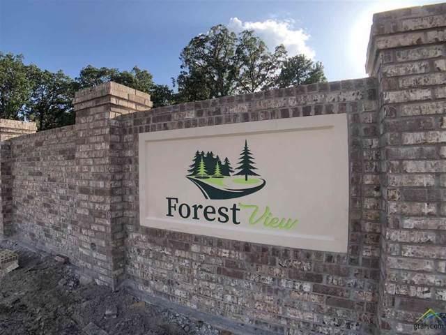 Lot 45 Hill Top Drive, Mineola, TX 75773 (MLS #14270194) :: The Kimberly Davis Group