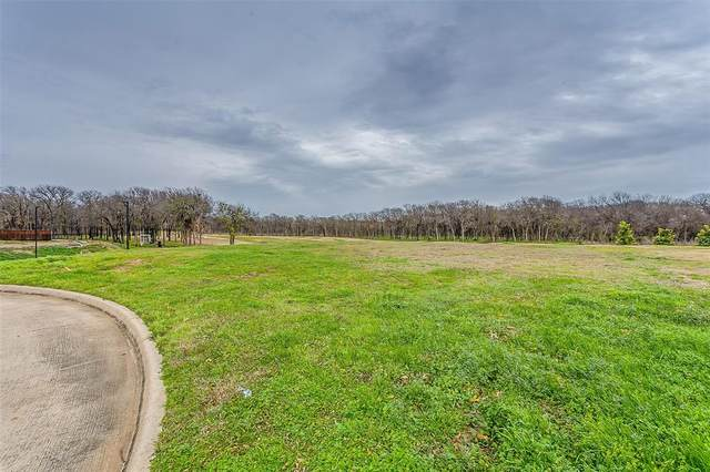 1224 Southern Oaks Court, Fort Worth, TX 76028 (MLS #14270236) :: Potts Realty Group