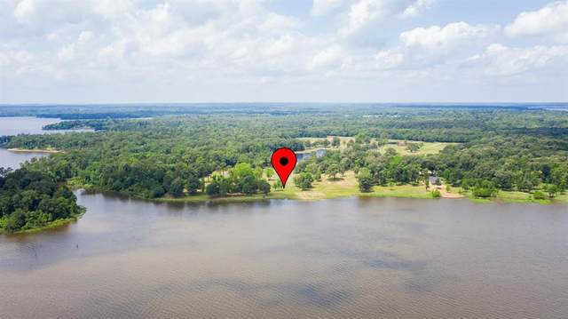 Lot 31 Sterling Shores, Mount Vernon, TX 75457 (MLS #14271787) :: The Kimberly Davis Group