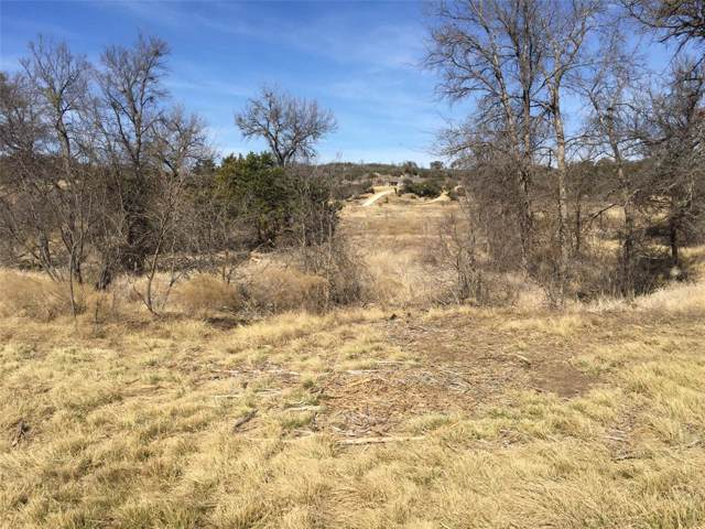 Lt 437 Indigo Bush, Possum Kingdom Lake, TX 76449 (MLS #14272417) :: Real Estate By Design