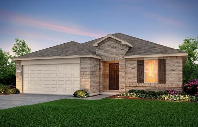 1120 Ainsley Lane, Forney, TX 75126 (MLS #14272549) :: Potts Realty Group