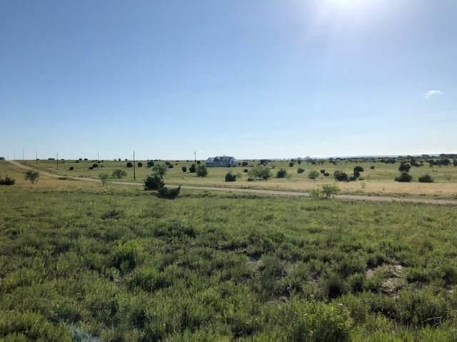tbd County Road 2337, Lampasas, TX 76550 (MLS #14274524) :: Team Hodnett