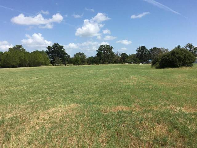 897 County Road 1895, Yantis, TX 75497 (MLS #14274584) :: The Chad Smith Team
