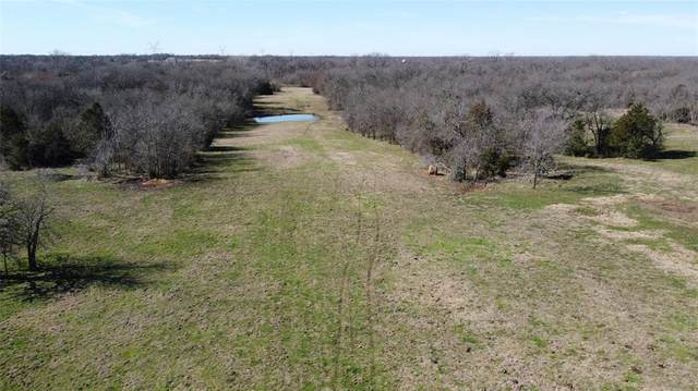 66 Ac County Road 4741, Cumby, TX 75433 (MLS #14275652) :: The Hornburg Real Estate Group