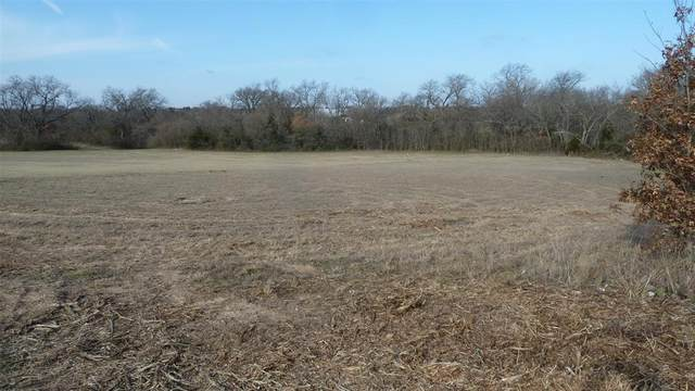 0009 N Fm 51 Highway, Decatur, TX 76234 (MLS #14276873) :: Potts Realty Group