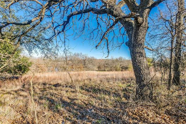 TBD Falcon Drive, Weatherford, TX 76088 (MLS #14277733) :: The Kimberly Davis Group