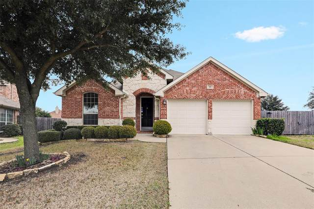 101 Cassandra Drive, Forney, TX 75126 (MLS #14277943) :: The Heyl Group at Keller Williams