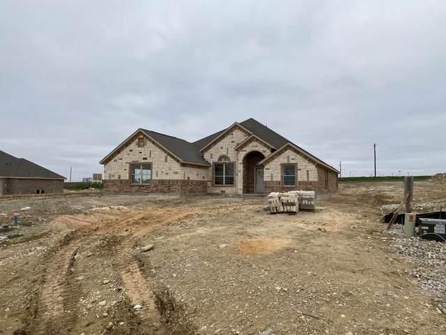 13804 Prairie Vista Lane, Ponder, TX 76259 (MLS #14278863) :: The Good Home Team